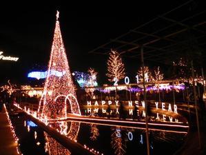 Ashikaga_flower_park